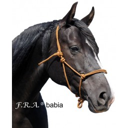 F.R.A.® Licol Babia poney,...